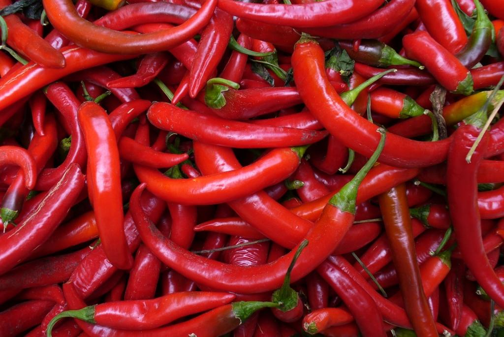 A pile of fresh chilis would make a spicy bowl indeed.